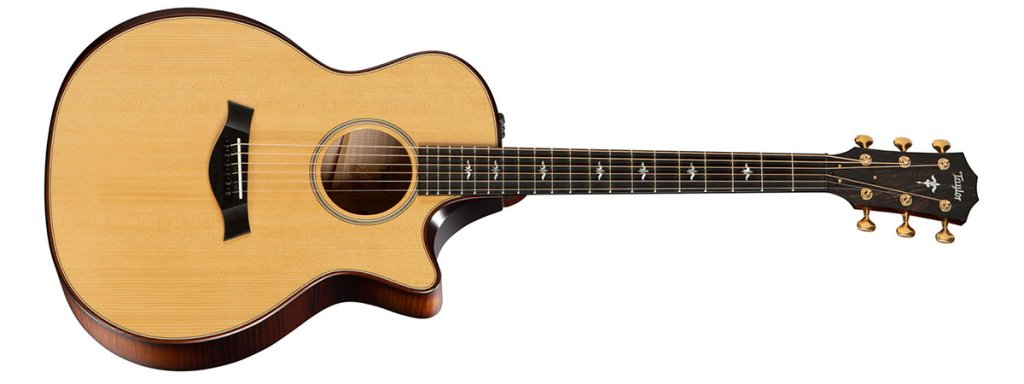 Taylor 614ce with a torrefied top